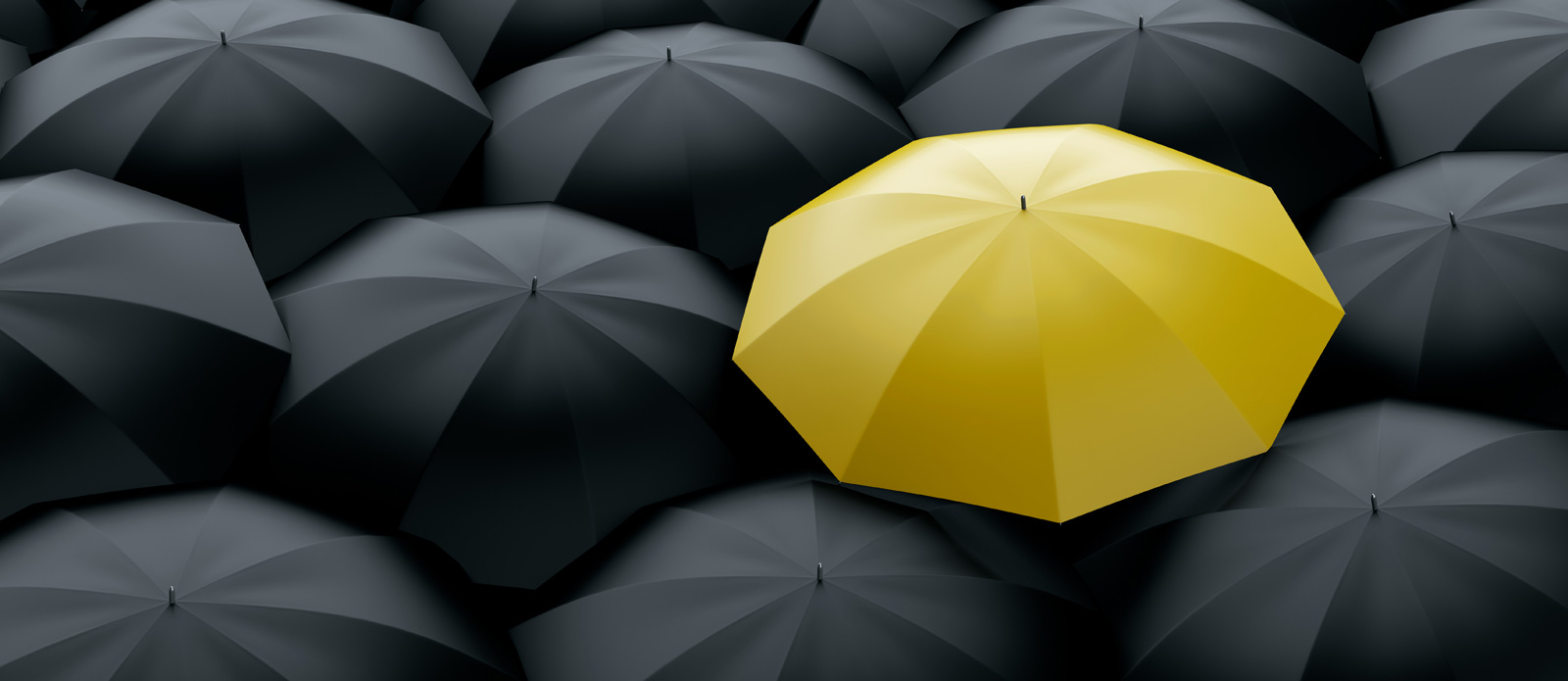 A unique identity helps you stand out from the crowd